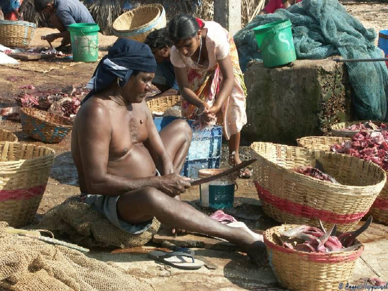 otzivi-o-seks-turizme-indiya