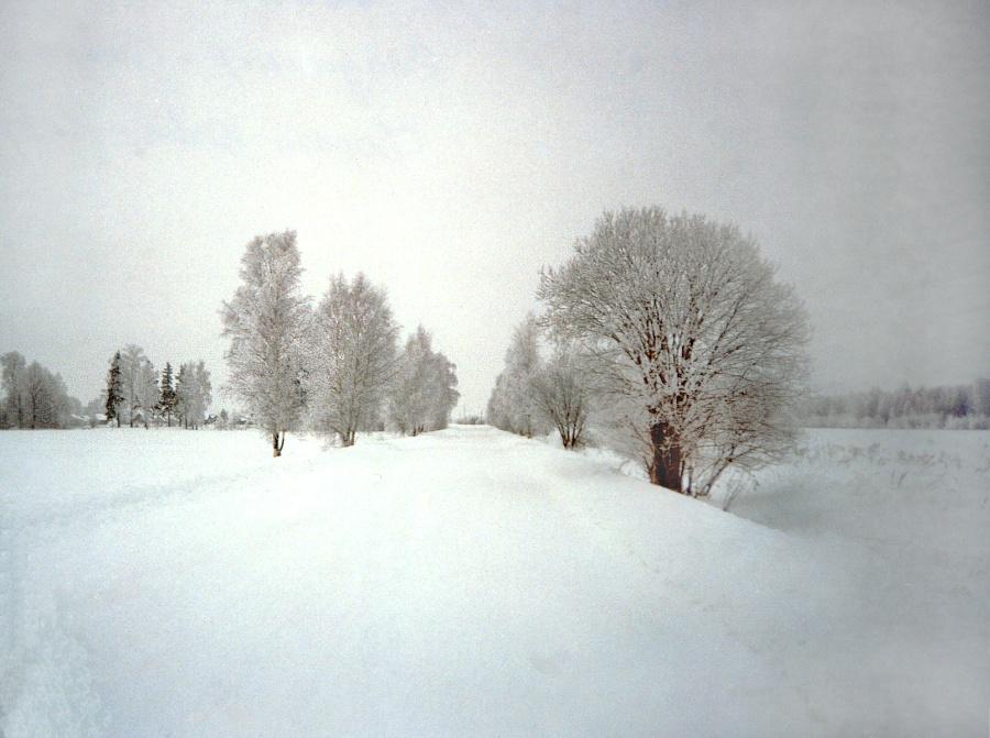 Три дня в январе