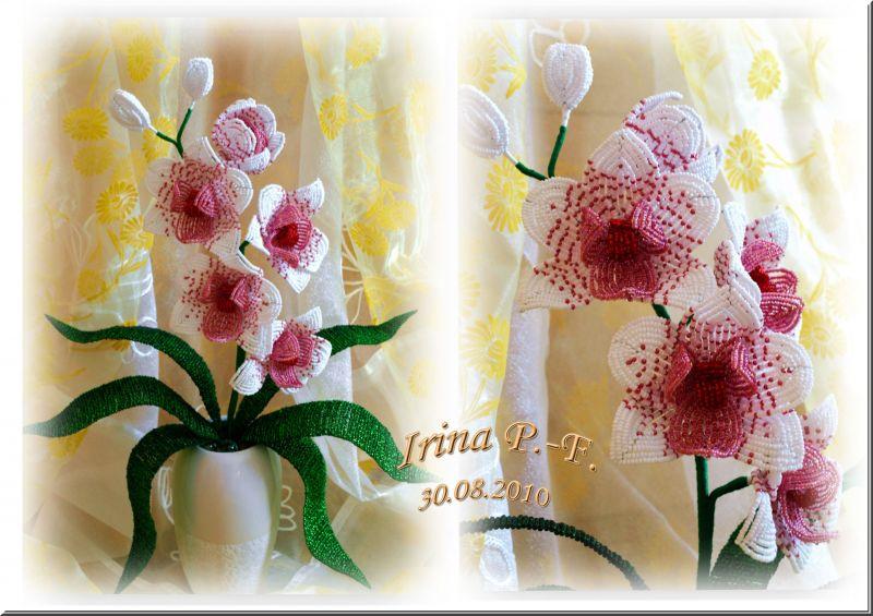 Как сделать с бисера орхидею мастер класс