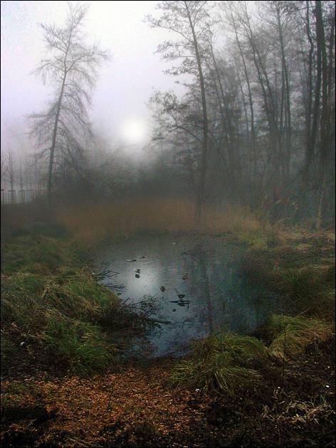 http://www.photohost.ru/t/600/400/270712.jpg